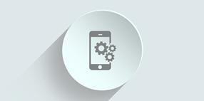 Aplicació mòbil per a la gestió de Lliterers