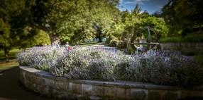 Jardín terapéutico para la estimulación del paciente